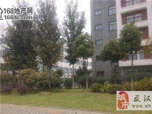 武汉东风乘用车旁7000m2钢构厂房配32T行车出