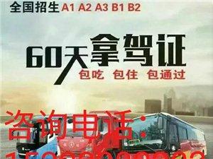 广东增驾AB牌 两个月拿证