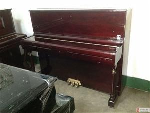 淄博钢琴键盘乐器专卖店