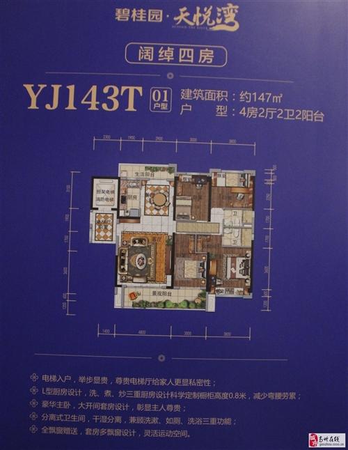 YJ143T01户型四房两厅两卫两阳台