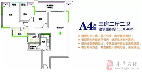 A4户型图