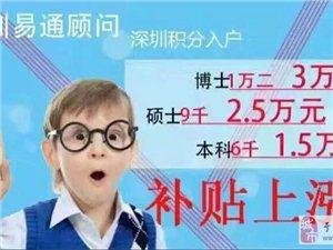 """深圳负责""""招才"""",你负责""""进宝"""""""