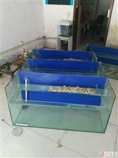 便宜出售多层鱼缸