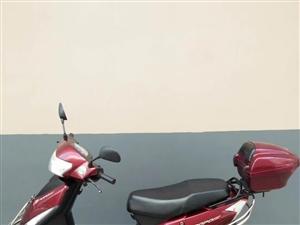 大阳跑跑三代踏板摩托车闲置需转让