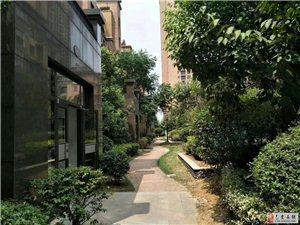 天悦容城全新花园式洋房,S6地铁直达,售楼处直售
