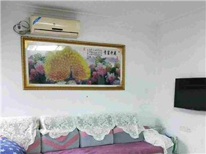 金巢花园 2室2厅1卫 78平米