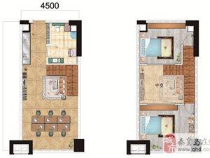 路能达创客天地1室1厅1卫,超大层高,商住两用
