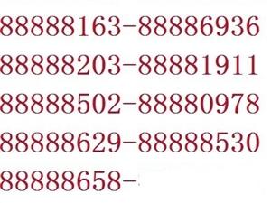 转让88888开头固话号