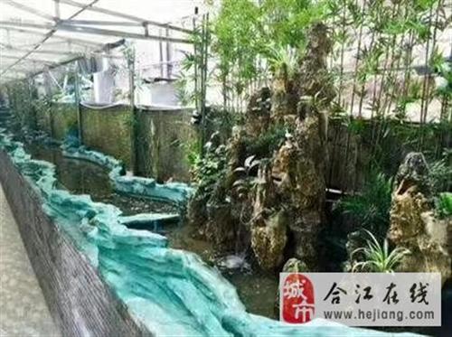 合江县合江镇启航幼儿园
