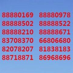 新到澳门网上投注官网座机号码66666开头固话靓号
