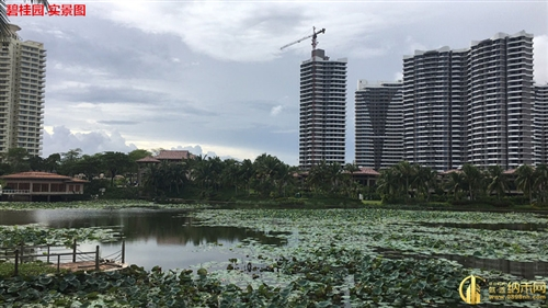 碧桂园东海岸-实景图