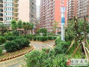 丽都家园临江2幢2-1103毛坯房(卫生室楼上)149�O、四室两厅两卫双阳台出售!