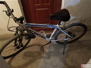 出售个人山地自行车,因个人没时间,急出售