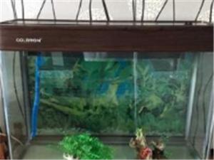出售鱼缸八层新的一套的