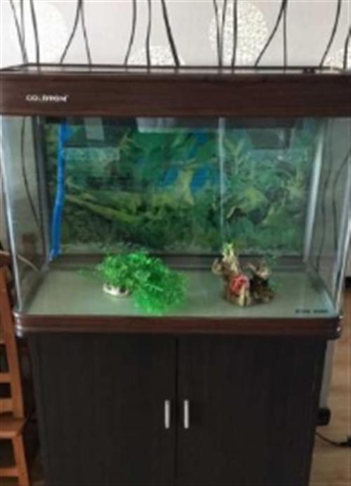 出售魚缸八層新的一套的