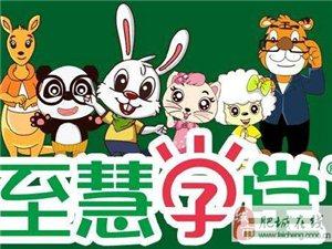 上海少儿数学思维早教班哪有?至慧学堂暑期班费用师资