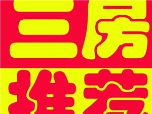 (齐)滨江·城市花园3室2厅2卫2300元/月