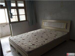 良苑小区(人民路东段28号)2室1厅1卫600元/月