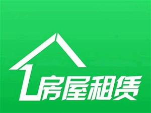 大圆弧附近,自建房1楼,简单装修,1房1厨1卫
