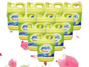 麗多康洗潔精、洗衣液、皂液、誠招批發零售商