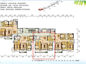 家和西岸悦湾3房一线江景73万元