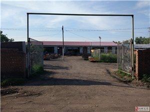 独院出租,4间房320平可做仓库,前后院共1800平