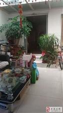 北苑小区2室1厅1卫60万元环境优美