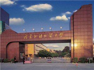 广东外语外贸大学全日制自考专业培训招生