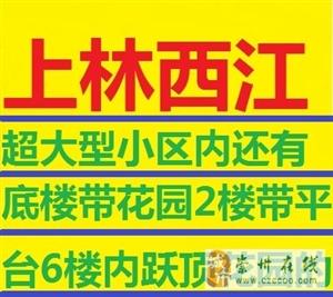 上林西江电梯精品户型双卫3室2厅2卫103万元
