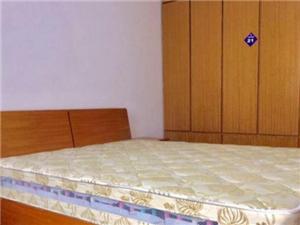 宁工新寓(一至二村)小区3室1厅1卫3900元/月