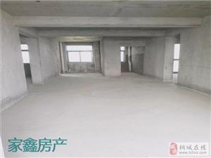 天红・中环银座+高层电梯房+双阳台东边户+仅售55万