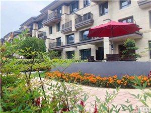 房东出国出售一套南京周边首付30万嘉恒有山法式别墅