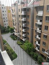 个人出售丽水鑫城二期电梯房精装修3室2厅2卫