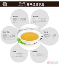 单丛茶,凤凰蜜兰香