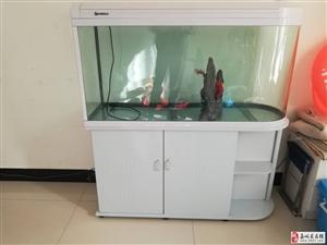 1.2米白色上过滤鱼缸出售