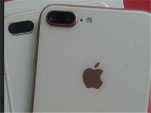 自用iphone8plus金色258G保期内99新