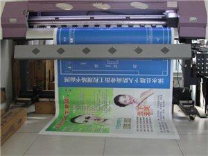涞水999商盟卡,喷绘写真名片印刷享受史上最低价