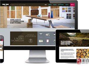 網站建設 多功能型網站,營銷網站 APP