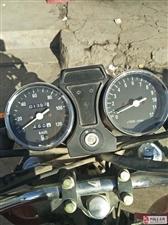 三轮烧油摩托车低价出售