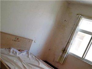 兴尔旺2室1厅1卫600元/月