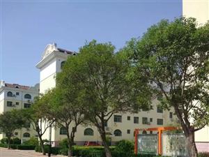 同和小区,4楼,138平,车库,实验中学学区