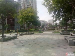中国人行家属院4楼东户一小实验学区房免税房