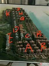 泰华城4期G5区4房84.75万
