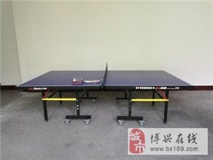 正品双鱼乒乓球台,少用,很新,半价转让 13245437335