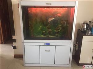 二手鱼缸闲置出售