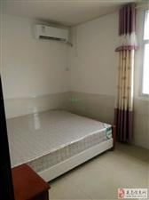 单身贵族公寓金水大道1室1厅1卫1300元/月
