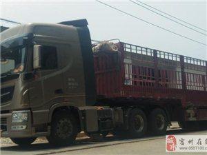 东风天龙旗舰560牵引高栏半挂车出售