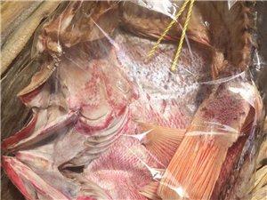 大发快3白马差�c�]把冷光�獾猛卵�井一级红鱼,打捞原干晒无添加年货送礼佳品