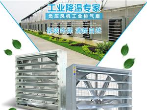 大功率強力負壓風機工業排風扇降溫通氣設備水簾