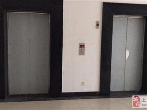 八号线生活广场,商业用地办公招租50平至5000